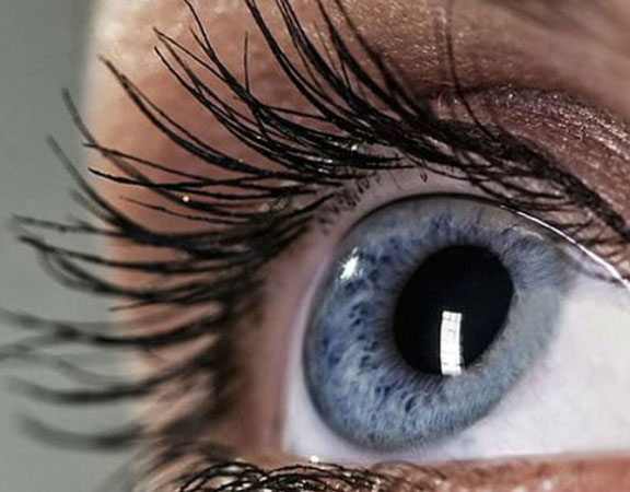 Closeup of woman's eyelash perm and eyelash tint